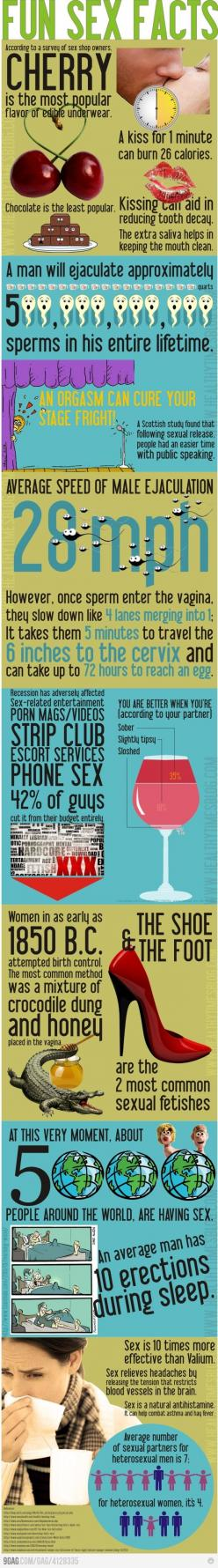 Fun sex facts!: Funfacts Sexfacts, Fun Sexy, Life, Fun Scary Facts Stories, Funny Facts, Sexy Facts, Fun Facts, Infographics, Fun Sex Facts Jpg