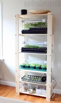 Genius. Why did I never think of vertical? it sure would be nice to get my kitchen table back!  Grow Light Shelving for Seed Starting Indoors: Starting Indoors, Indoor Grow Light, Seed Starting, Indoor Garden Light, Kitchen Table, Diy Garage Light, Light