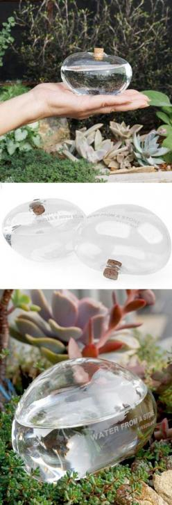 Glass Stone slowly waters your Plant. Great for when you're traveling.: Garden Plants Patio, Stones Slowly, Plants Gardening Nature, Gift Ideas, Stone Slowly, Watering Stones, Slowly Waters, You Re Traveling
