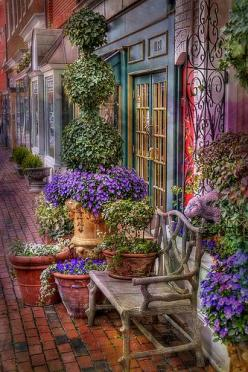 Gorgeous: Color, Outdoor, Beautiful, Gardens, Storefront, Store Front, Place, Garden, Flower