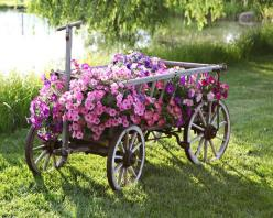 Great way to repurpose!!! Adds interest and beauty to your outdoor space AND you can move it if it needs more/less sun!: Garden Ideas, Yard, Beautiful, Outdoor, Gardening, Gardens, Flower Wagon, Flowers, Garden