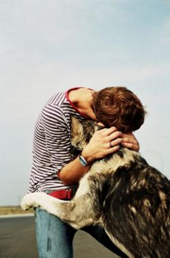 GSD: Animals, Dogs, Best Friends, Pet, Mans Best Friend, Photo