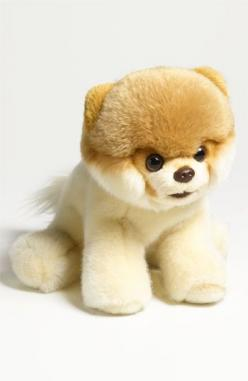 Gund 'Boo - World's Cutest Dog' Stuffed Animal #boo: Stuffed Animals, Nordstrom, Cutest Dogs, Gund Boo, Animal Boo, Worlds Cutest