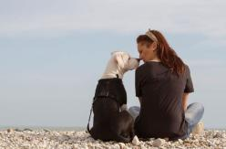 How to Choose the Right Dog for Your Lifestyle - Don't just pick the cutest pup — consider your habits, and find a dog that fits them: Immagini Nel, Dogs, Quotes, Pets, Photo, Friend, Animal