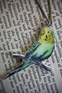 I'm not sure where this budgie-mania comes from.  I've never kept budgies and I hate seeing birds in cages.  But i think they are beautiful birds and think they make great design motifs for wallpaper, fabric, ceramics etc.: Budgie Cage, Pet Budgie