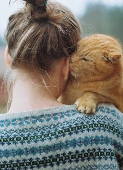 I have something I want to share, but you have to promise to keep it just between us, okay? I really love you.  Meow.: Cats, Animals, Kitty Cat, Sweet, Pets, Kitty Kisses, Things, Friend