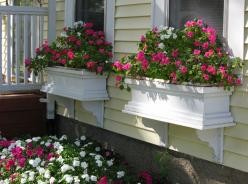 I like flowers that I can see from the inside without being right on top of the window.: Idea, Outdoor, Curb Appeal, Windows, House, Garden, Flower Boxes, Window Boxes