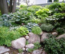 """I love that this """"landscaping"""", looks completely natural. The varying layers, textures and heights make it a beautiful place to sit and read a book.: Garden Ideas, Landscaping Ideas, Shade Gardening, Side Yard, Rock Gardens, Outdoor, Garden Flower"""