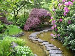 I love the stepping stones on the water. I also would like to do something similar to this, where the water is shallow creating a delicate look.: Garden Ideas, Paths, Water Gardens, Secret Garden, Beautiful