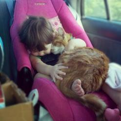 (I may have already 'pinned' this, but it deserves another... babies and cats just go together!)  awwww...: Cats, Animals, Sweet, Pet, Baby, Kids, Kitty, Photo, Friend