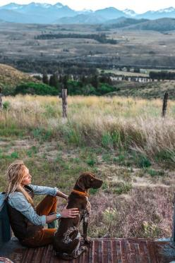 I want to be that girl! Dog beside you, in the mountains, on the back of a tailgate. I don't think it could get much better than that!: Long Day, Girls, Dog, Photo, Gsp, Friend, Country, Animal