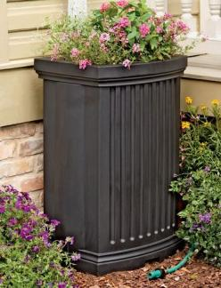 If I had a rain barrel, I'd want it to be something like this one: pretty, not to big, with plants growing on top. Maybe even incorporated into my deck.: Rainbarrels, Rain Barrell, Madison Rain, Rain Barrels, Water Barrel, Outdoor, Gardening, Barrel P