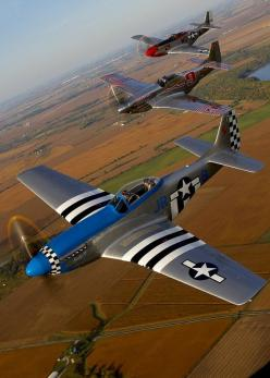 If there was any plane I could fly, this would probably be it. P-51 mustang.: Mustangs, Airplane, Aircraft, War Birds, P 51 Mustang, P51 Mustang