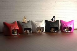If weren't allergic to cats I'd want to get a cat so I could have one of these in my office.: Cats, Cat Beds, Kitty Cat, Animals, Meow Cat, Pets, Cat Houses, Cat Stuff, Kitty Meow
