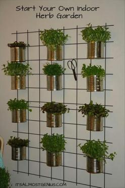 Indoor Herb Garden - no instructions on the website, but it's pretty self explanatory. I am thinking it could be simplified by using a over-the-door shelving unit on a kitchen pantry door.: Garden Ideas, Indoor Herbs, Herbs Garden, Gardening, Gardens,