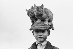 It's a cat hat!: Photos, Cats, Hats, Animals, Vintage Photo, Boy, Photography