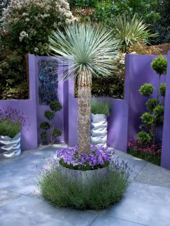Large sculptural plants and vivid colors create plenty of drama in this fusion-style patio garden.       You Might Also Like... See more of RMSer Ozymndius space. Advertisement: Garden Ideas, Purple, Color, Outdoor, Palm Trees, Fusion Gardens, Garden, Flo