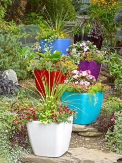 Large Square Planters: Self-Watering Rolling Planter | Gardeners.com - Love the bright colors, and self-watering would be so nice too!: Square Planters, Unique Planters, Squares, Self Watering Rolling, Rolling Planter, Larger Houseplants, Mypotsandplanter