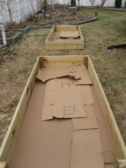Lay down a thick layer of CARDBOARD in your raised garden beds to kill the grass. It is perfectly safe to use and will fully decompose, but not before killing any grass below it. They'll also provide compost and food for worms. WORKS BEAUTIFULLY.: Green T