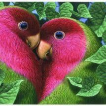 Look at those gorgeous pink & green lovebirds. They look like they belong with Lilly Pulitzer. ;) #for_my_lovebird: Animals, Nature, Color, Beautiful Birds, Photo