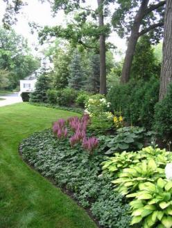 low maintenance plants - The background is Spruce and Arborvitae. The middle layer is Viburnum, Hydrangea and Ligularia. The foreground is Astilbe, Hosta and Pachy sandra.: Landscaping Ideas, Shade Garden, Front Yard, Gardens, Traditional Landscape, Backy