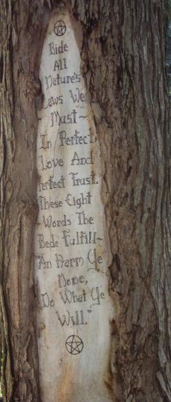 ... <3 I do love this but at the same time it is harm to a tree unless it is dead. The irony is not lost on me.: Blessed, Wicca Pagan, Pagan Wiccan, Pagan Witch, Wiccan Rede, Witchy Woman, Tree Quote, Witchy Stuff