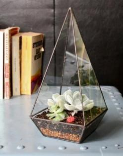 Make a small monument of your house plants by putting them inside this handmade clear glass obelisk. $120: Ideas, Recycled Glass, Glasses, Obelisk, Plants, Obelisk Terrarium, Garden