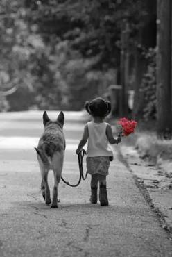 marieisaacs:  http://weheartit.com/entry/81610998/via/marie_w_isaacs  Para Lilica: Girls, Sweet, Colorsplash, Bestfriends, Dogs And Kids, Puppy, German Shepherd, Animal