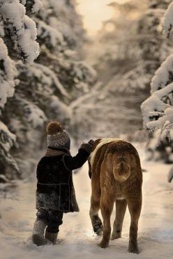 Non ti preoccupare,se diventa troppo alta,ti porto io  .......................Do not worry, if it gets too high, I'll bring you: Photos, Winter Wonderland, Snow, Elena Shumilova, Elenashumilova, Dog, Photography, Friend, Animal