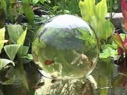 "OMG I WANT THIS!!! This video by Garden Gate shows how easy it is to install an Add-A-Sphere into your water garden. The Add-A-Sphere allows your fish to ""swim"" above the water surface. It is available on our www.ShopTJB.com on-line storefront (ht"