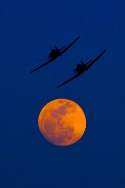Over The Moon. #moonshine #moonlight #moonpics http://www.pinterest.com/TheHitman14/moonshine-%2B/: Harvest Moon, Moonshine Moonlight, Bronco Sky, Beautiful Moon, Moon La Lune Over, Moonlight Moonpics, Planes Flying, Clemson Moon, The Moon