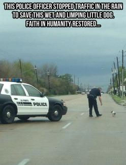 people-doing-amazing-things-for-animals-03167: Police Officer, Animals, Sweet, Hero, Dogs, Faith In Humanity Restored, People