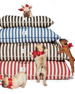 personalized vintage-inspired dog beds  http://rstyle.me/n/tqej2pdpe: Harry Barker, Dogs, Personalized Vintage Inspired, Pet, Vintage Inspired Dog, Dog Beds, Barker Personalized