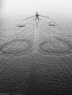 : Photos, Picture, Rowing, Things, Row Row, Photography