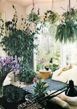 plants everywhere! indoor garden bedroom wicker boho botanical modern vintage rustic boho interior design style home decor -- from 36 Stunning Bohemian Homes You'd Love To Chill Out In: Interior, Hanging Plants, Living Room, Houseplant, Indoor Garden,