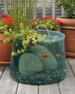 Pop-up Aquarium pond. I like how this is clear, as most in my experience are black, not allowing you to see the fish!: Aquarium Pond, Idea, Water Features, Pop Up, Fish Tanks, Fishtank, Water Garden