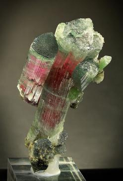 Rainbow Tourmaline. What a lovely specimen. Lovely for healing love issues of all kinds--romantic, friendship or spiritual. Www.arielhubbard.com: Crystals Minerals Gems, Gems Minerals Crystals, Gems Rocks Stones Minerals, Gemstones Rocks, Gems Gemstones,