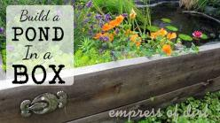 Rasied beds aren't just for veggies: you can add a small garden pond and flowers too! See how http://empressofdirt.net/build-a-pond-in-a-raised-bed/: Garden Container, Ponds, Garden Ideas, Raised Beds, Outdoor, Raised Garden, Small Garden