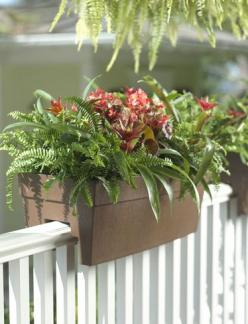 Self-Watering Railing Planter - I love the look of these planters on my deck: clean, sleek, but still traditional. And the self-watering ability is a bonus!: Railings, Self Watering Railing, Garden Ideas, Railing Planter, Outdoor, Gardening, Planters