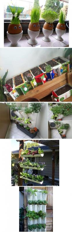 Simple DIY Ideas for an indoor garden-especially the carton planters-great use for almond milk containers!: Diy Ideas, Garden Ideas, Diy'S, Gardening Ideas, Outdoor, Simple Diy, Indoor Garden