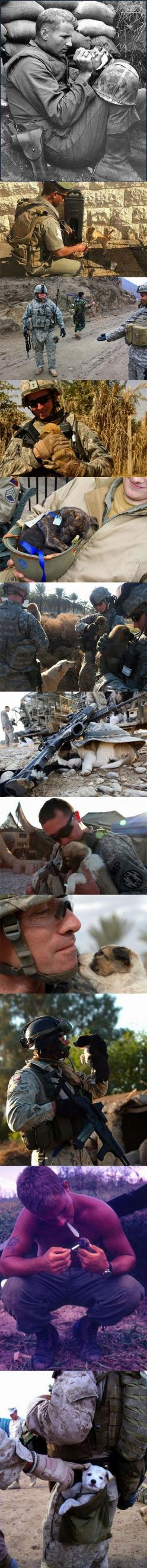 So cute....: Soldiers, Best Friends, Hero, Sweet, My Heart, Real Men, Dog, Man, Animal