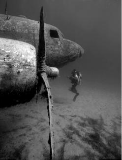 sunken airplane: Photos, Stuff, Underwater, Airplane, Scuba Diving, Sea, Places, Planes, Photography