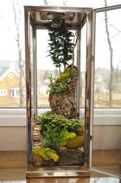 terrarium: I don't know how you would build this but I like the look.: Stuff, Green, Gardening Ideas, Plants, Gardens, Large Terrarium Ideas, Pixels, Garden Terrariums