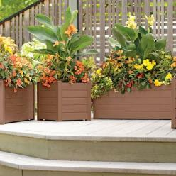 Terrazza Square Planter Cannas lilies  / day lilies / begonias / geraniums / coleus  / trumpet honeysuckle  / thai pepper plants: Flower Container, Watering Planters, Garden Ideas, Squares, Terrazza Square, Self Watering, Planter Boxes, Container Ideas