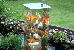 The column is open on the bottom so that the fish can swim up out of the pond and be at eye level if they want to.: Water Feature, Aquarium, Water Garden