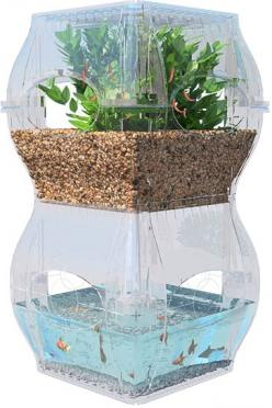 The Garden Fish Tank: The Future of Sustainability and Indoor Gardening | Patio Furniture Articles: Aquaponic Hydroponic Gardening, Aquaponics, Fish Tanks, Plants, Gardens, Indoor Gardening, Aqualibrium Garden, Fish Fishtanks