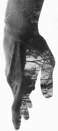 The mind's subjugation of the body can be another ploy of the ego to keep us divided against the Self! Ego thrives on oppositions, so defeat of oppositions is the true letting go of ego.-David Richo, P.h.D: Double Exposure Photography, Photos, Amazing Pho