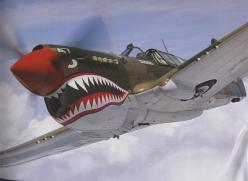 The Shark's face was meant to scare the crap out of the enemy. It worked !: Airplanes Aviones, Airplanes Jets Helicopters, Ww2 Plane, Curtis P 40, P 40 Warhawk, Flying Tigers