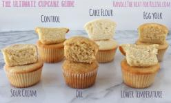 The Ultimate Cupcake Guide shows how different ingredients and techniques make cupcakes light, greasy, fluffy, dense, crumbly, or moist! from Handletheheat.com: Baking Tips, Cupcake Guide, Cupcake Recipes, Food, Cupcake Comparison, Ultimate Cupcake, Desse