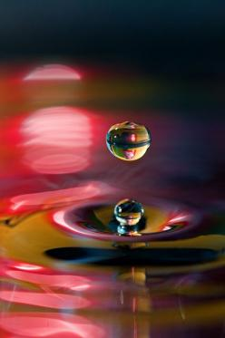 there's beauty in everything...we just have to see water drop: Bubble, Oil Paintings, Water Drops, Waterdrop, Beautiful, Dew Drop, Raindrop, Photo, Water Droplets
